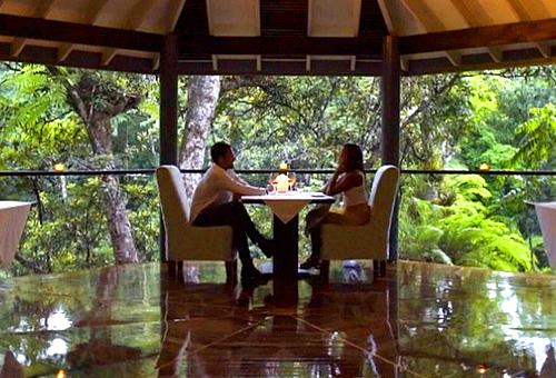 熱帶雨林生態酒店 進入大自然的世界