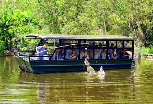 鱷魚冒險之旅