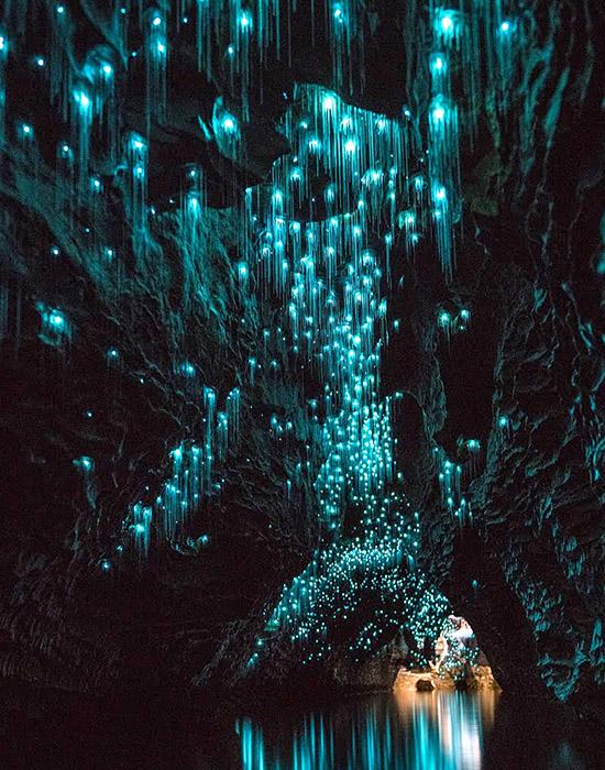 全球最驚艷螢光蟲洞-紐西蘭