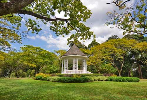 首登世界文化遺產之植物園