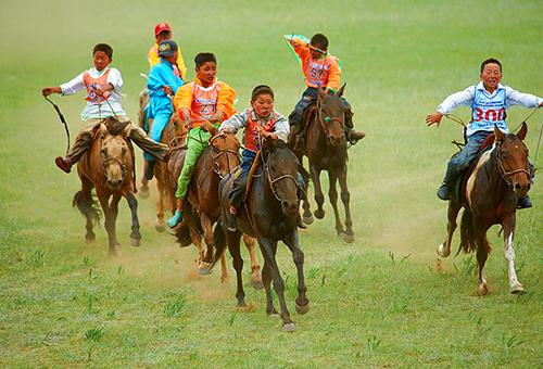觀賞激烈競技賽馬