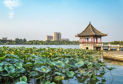 大明湖感受濟南湖光水色