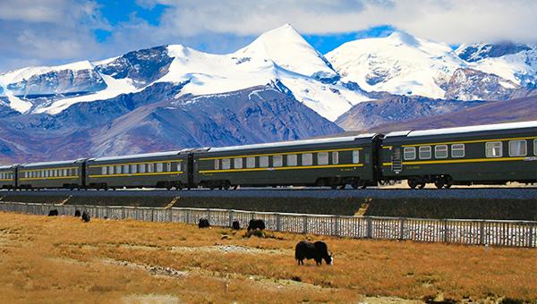 青藏風情火車團