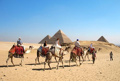 騎乘駱駝感受金字塔的魅力