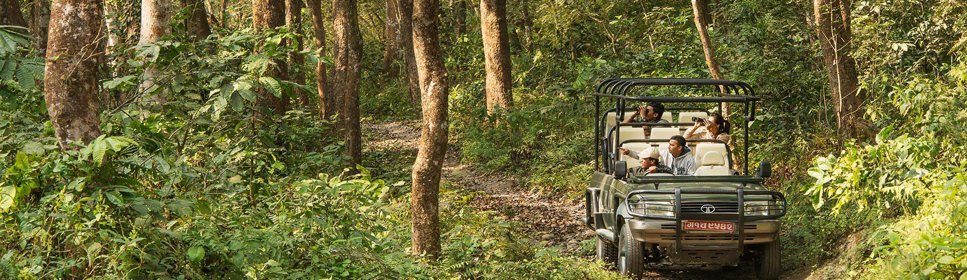 奇特旺國家公園