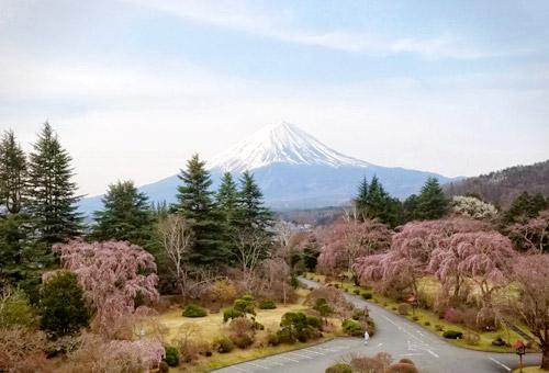 河口湖溫泉 富士觀景酒店Fuji View Hotel