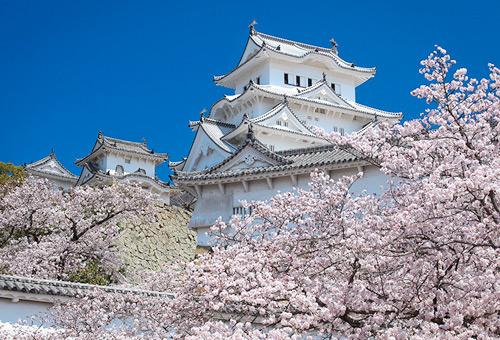參觀日本百大名城中保存度最完整的城池 - 姬路城