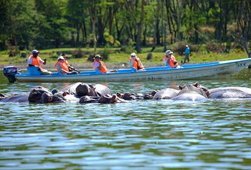 乘船遊奈瓦夏湖