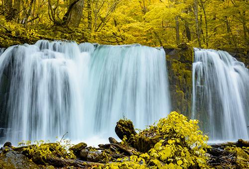 欣賞銚子大瀑布的水流洩下