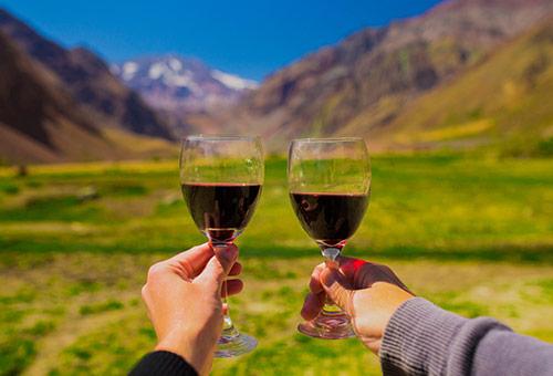 令人驚豔的智利葡萄酒