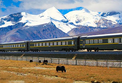 青藏列車Qingzang Railway