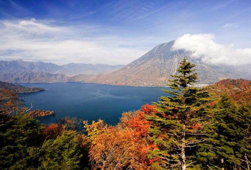 秋季體驗 中禪寺湖湖畔楓葉布山林