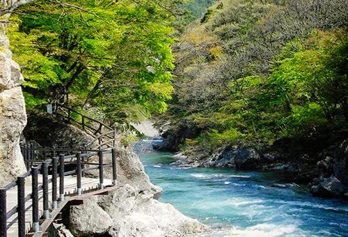 漫步諏訪峽谷歩道聽流水潺潺