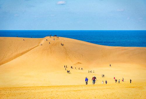 登上鳥取沙丘欣賞日本海的波瀾壯闊