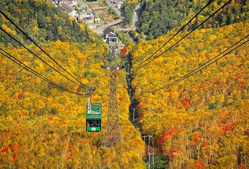搭乘黑岳纜車盡覽層雲峽楓葉