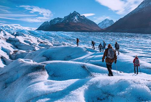 Grey Glacier冰川健行