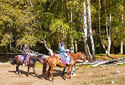 騎馬登觀景台